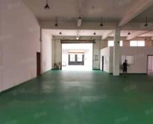 (出租)江宁区 东善桥550平标准厂房出租 环氧地坪 层高5.5米