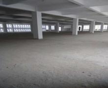 (出租) 沭阳北园区永嘉路31号出租厂房整栋