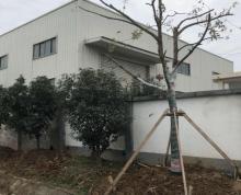 (出租) 顶山 南京北站 顶山 永宁镇 厂房 400平米