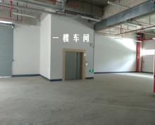 昆山花桥独院全新厂房出租 有18亩空地