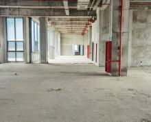 (出租)金润大道标准厂房,高度4.8米,有5吨货梯,电5000kva