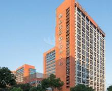 河西CBD核心(嘉业国际)4.3米层高 精装有家具 中泰国际 联强国际 奥体东
