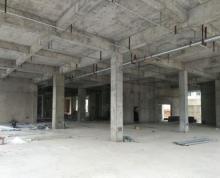 (出租)高新区5378平方物业对外招商