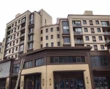 (出售)鼓楼中冶盛世滨江 地铁口餐饮小面积吸金旺铺 年租金20万