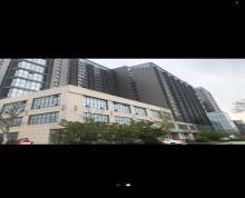 (出租)壹品国际写字楼六楼精装出租