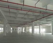 (出租) 广州路水果批发市场附近850平方厂房出租