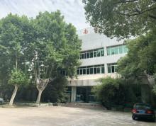 五塘广场独栋2320平米办公楼、展厅、厂房
