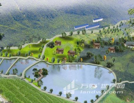 江苏省南京市溧水区1000亩林地