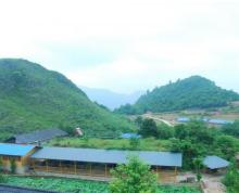 贵州黔东南210国道2000亩养殖场