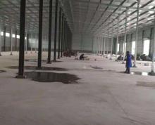 新洋街道新洋路与人民北路交界处西 仓库剩余约2000平米
