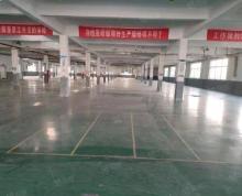 (出租)亭湖区希望大道厂房仓库 二楼带货梯A34 0751 0701