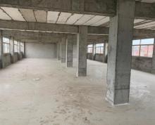 (出租)大厂房便宜租,1600平3万一年