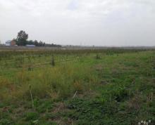 (出租)出租赣榆区城头镇东留夫村23亩养殖用地