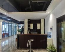 (出租)雨花客厅 VIVO大厦 300平豪装 全套家具,拎包办公