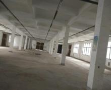 (出租)二层标准框架结构厂房 可分租
