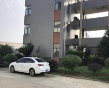 江宁禄口空港工业区3000平标准厂房出租带行车