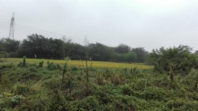 江宁30亩工业土地合作开发