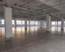 (出租)高新区独栋8500平丙二类厂房仓库出租耐磨地面