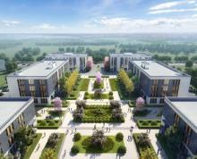 (转让)铜山智造高规厂房50年产权大证,轻钢单层!2层3层标准厂房