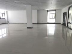 出租新北区新桥厂房/写字楼,交通方便,龙江高架,招工方便