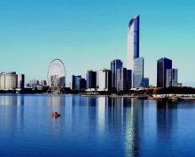 (出售)江苏地标国金中心IFS300平云端湖景一手办公生成房源报告