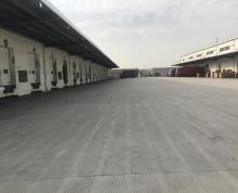(出租)新区标准仓库5300平米出租