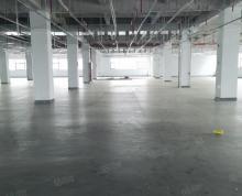 (出租)黄桥中环产业园一楼2500平米 形象超好 两证齐全